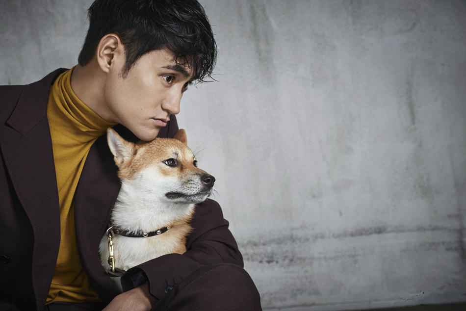 袁弘生日大片曝光抱爱犬出镜尽显暖男特质