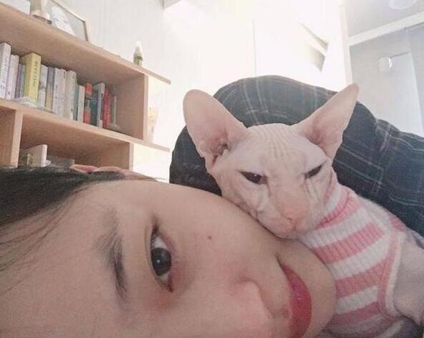 崔雪莉与爱宠贴面自拍 网友:被猫吓坏了